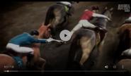 UTAUC Horses