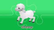 Nursery Tracks Sheep