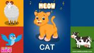 Ebubuzz Kids Cat