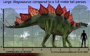 Stegosaurus stenops (V2)
