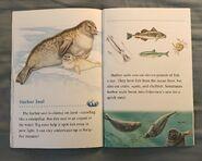 Animals of the Polar Regions (10)