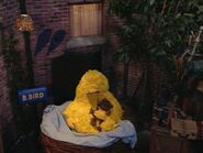 Big Bird sleeps in his new nest at the end of episode 3980