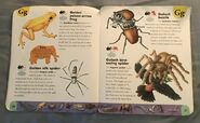 Extreme Animals Dictionary (10)