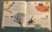 Bug Dictionary (11)