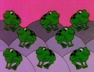 8-frogs-fmafafe