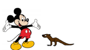 Mickey Mouse meets North American River Otter