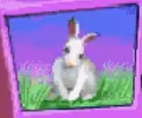 Rabbit-jumpstart-preschool-the-alphabet-thing