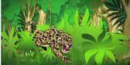 ATF Jaguar