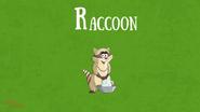 Bonny Wondy Raccoon
