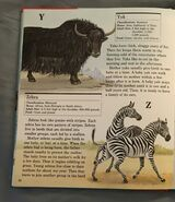 My First Book of Animals from A to Z (30)