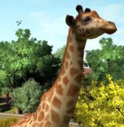 West-african-giraffe-zootycoon3