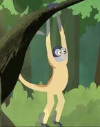 SpiderMonkey (Wild Kratts)
