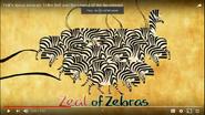 TBLOTN Zebra Zeal