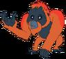 Tommy the Orangutan