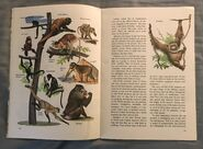 A Golden Exploring Earth Book of Animals (5)