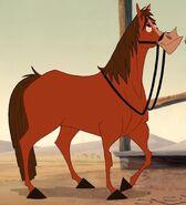 Buckthehorse