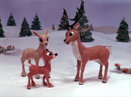 Donner ask rudolph go play the fawns