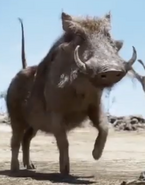 Live Action Pumbaa