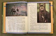Scholastic Encyclopedia Of Animals (7)