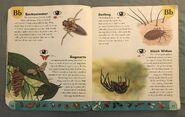 Bug Dictionary (2)