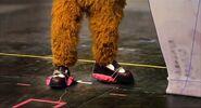 Fozzie has cast shoes