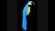 Safari Island Parrot