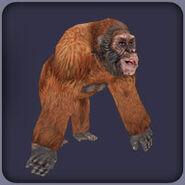 Gigantopithecus (Blue Fang)