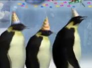 Little Einsteins Emperor Penguins