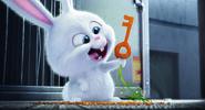 Snowball a carrot key