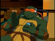 2500754-turtle238