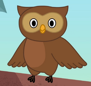 Owl in turn and learn