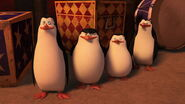 Penguins-disneyscreencaps.com-9752