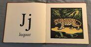 The New Alphabet of Animals (10)