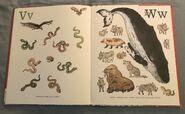 8- An Animal Alphabet (12)