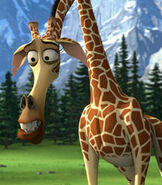 Melman in Madagascar Europe's Most Wanted