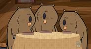 Beavers, North American (Total Drama Island)