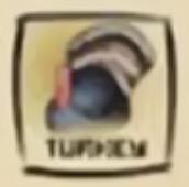 IMG df turkey