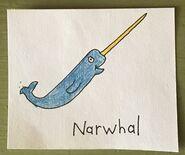 Narwhal Begins With N