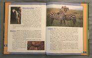 Scholastic Encyclopedia Of Animals (59)