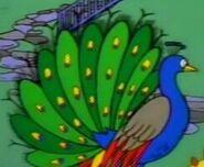 Simpsons Peacock