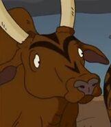 TWT Cow