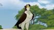 TLG Eagle