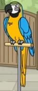Family Guy Macaw