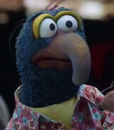 Gonzo in The Muppets (2015)