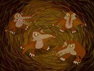 Land-before-time5-disneyscreencaps.com-5590