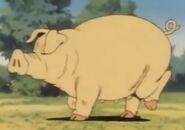 Ox-tales-s01e001-pig