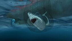 Sharkbait-reef-disneyscreencaps.com-8429