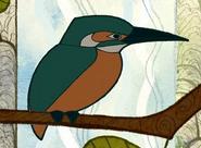 SoK Kingfisher