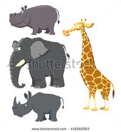 Stock-vector-african-big-wild-animals-set-hippopotamus-elephant-rhinoceros-and-giraffe-vector-illustration-418582063