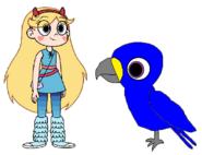 Star meets Hyacinth Macaw